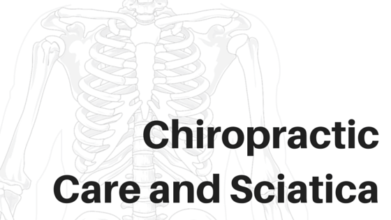 Chiropractic most common majors